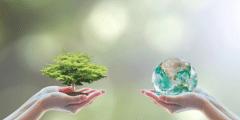 Online gokken beter voor milieu - Milieuvriendelijk gokken